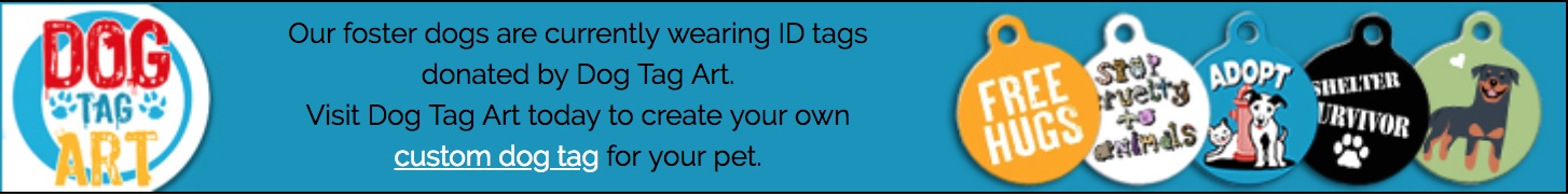 Visit Dog Tag Art today to create your own